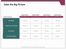 Sales The Big Picture Sales Strategies Ppt Powerpoint Presentation Infographic Template
