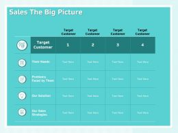 Sales The Big Picture Strategies Solution Ppt Powerpoint Presentation Background Images