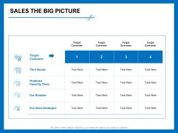 Sales The Big Picture Their Needs Ppt Powerpoint Presentation Icon Design Inspiration