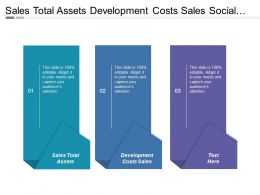 Sales Total Assets Development Costs Sales Social Responsibility