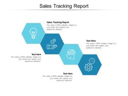 Sales Tracking Report Ppt Powerpoint Presentation Professional Graphics Design Cpb