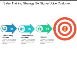 Sales Training Strategy Six Sigma Voice Customer Management Structure Cpb