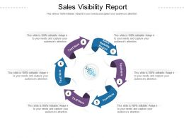 Sales Visibility Report Ppt Powerpoint Presentation Portfolio Design Templates Cpb