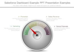Salesforce Dashboard Example Ppt Presentation Examples