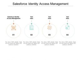 Salesforce Identity Access Management Ppt Powerpoint Presentation Infographic Template Infographics Cpb