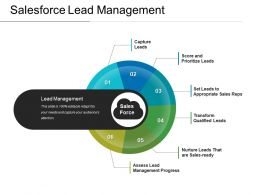 Salesforce Lead Management Powerpoint Presentation