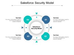 Salesforce Security Model Ppt Powerpoint Presentation Styles Elements Cpb