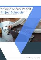 Sample Annual Report Project Schedule PDF DOC PPT Document Report Template