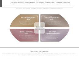 Sample Business Management Techniques Diagram Ppt Sample Download