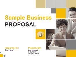 Sample Business Proposal Powerpoint Presentation Slides