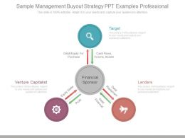Sample Management Buyout Strategy Ppt Examples Professional