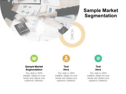 Sample Market Segmentation Ppt Powerpoint Presentation Outline Templates Cpb
