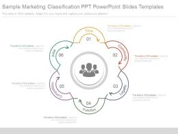 Sample Marketing Classification Ppt Powerpoint Slides Templates