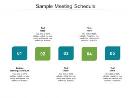 Sample Meeting Schedule Ppt Powerpoint Presentation Summary Vector Cpb