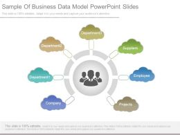 Sample Of Business Data Model Powerpoint Slides