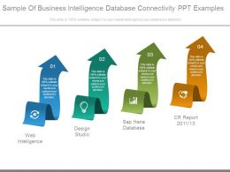 Sample Of Business Intelligence Database Connectivity Ppt Examples