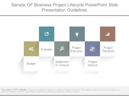 Sample Of Business Project Lifecycle Powerpoint Slide Presentation Guidelines