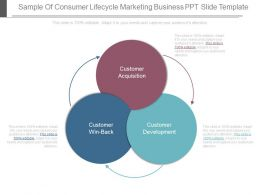 Sample Of Consumer Lifecycle Marketing Business Ppt Slide Template