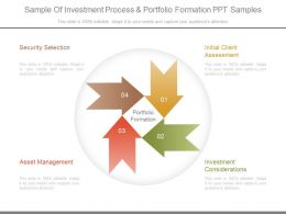 Sample Of Investment Process And Portfolio Formation Ppt Samples
