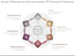 Sample Of Management Business Strategy Ppt Examples Professional