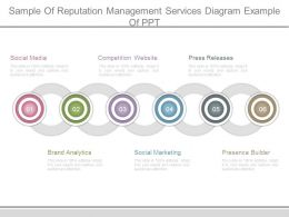 Sample Of Reputation Management Services Diagram Example Of Ppt