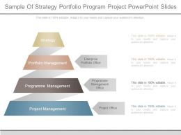 Sample Of Strategy Portfolio Program Project Powerpoint Slides