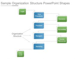 Sample Organization Structure Powerpoint Shapes