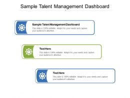 Sample Talent Management Dashboard Ppt Powerpoint Presentation Images Cpb