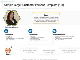 Sample Target Customer Persona Template Technology Campaigns Ppt Topics