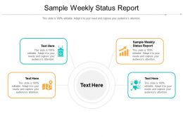 Sample Weekly Status Report Ppt Powerpoint Presentation File Show Cpb