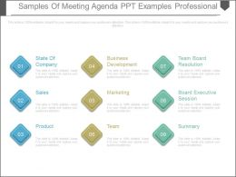 Samples Of Meeting Agenda Ppt Examples Professional