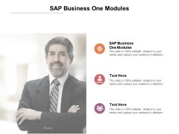 SAP Business One Modules Ppt Powerpoint Presentation Introduction Cpb