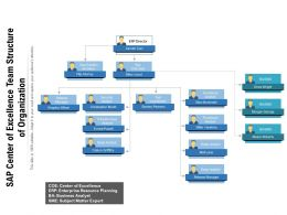 Sap Center Of Excellence Team Structure Of Organization