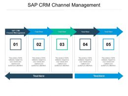 Sap CRM Channel Management Ppt Powerpoint Presentation Professional Smartart Cpb