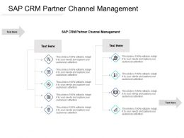 SAP CRM Partner Channel Management Ppt Powerpoint Presentation Example Cpb