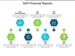SAP Financial Reports Ppt Powerpoint Presentation Slides Portfolio Cpb