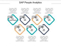 SAP People Analytics Ppt Powerpoint Presentation Summary Slides Cpb