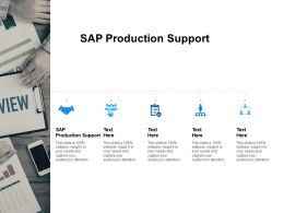 SAP Production Support Ppt Powerpoint Presentation File Formats Cpb