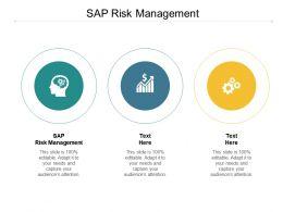 SAP Risk Management Ppt Powerpoint Presentation Ideas Template Cpb