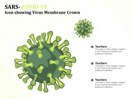 SARS COVID 19 Icon Showing Virus Membrane Crown