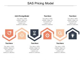 SAS Pricing Model Ppt Powerpoint Presentation Professional Influencers Cpb