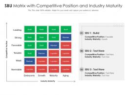 SBU Matrix With Competitive Position And Industry Maturity