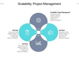 Scalability Project Management Ppt Powerpoint Presentation File Pictures Cpb