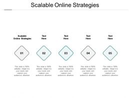 Scalable Online Strategies Ppt Powerpoint Presentation Summary Microsoft Cpb