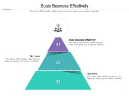 Scale Business Effectively Ppt Powerpoint Presentation Slides Graphic Images Cpb
