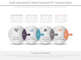 Scale Improvement In Sales Productivity Ppt Examples Slides