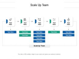 Scale Up Team Ppt Powerpoint Presentation Inspiration Professional Cpb