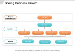 Scaling Business Growth Ppt Powerpoint Presentation Icon Templates Cpb
