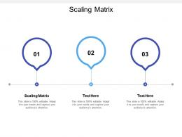 Scaling Matrix Ppt Powerpoint Presentation Gallery Icon Cpb
