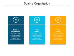 Scaling Organization Ppt Powerpoint Presentation Inspiration Good Cpb